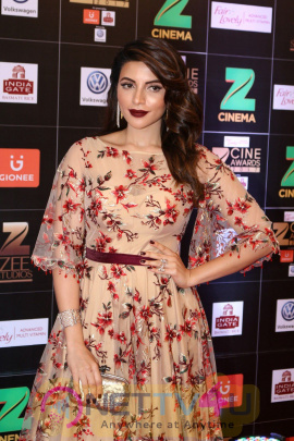 Red Carpet Of Zee Cine Awards 2017 Excellent Photos
