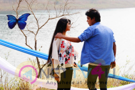 Krishnam Movie Stills  Tamil Gallery