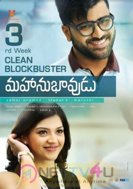 Mahanubhavudu Movie 3rd Week Posters Telugu Gallery