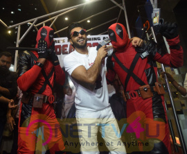 Ranveer Singh Hosts A Special Screening Of Hollywood Film Deadpool2 For His Family And Friends At Pvr Images Hindi Gallery