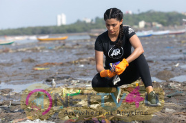 Adidas And Versova  Beach Clean Up Images   Hindi Gallery