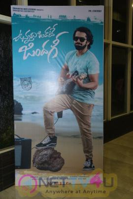 Vunnadhi Okate Zindagi Movie Audio Launch Stills Telugu Gallery