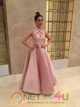 Gorgeous Tamannaah Bhatia Looked Radiant In A Mark Bumgarner Gown For The Vanitha Awards 2017 Hindi Gallery