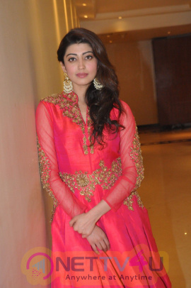 Actress Pranitha Subhash At Love For Handloom Event Cute Photos