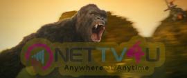 Kong Skull Island Movie Good Looking Stills English Gallery