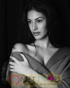 Actress Amyra Dastur New Gorgeous Pics  Hindi Gallery