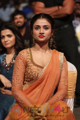 Actress Ankita Shrivastava Stunning Pics At Rogue Audio Launch Telugu Gallery