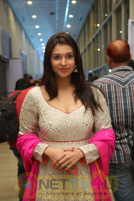 Actress Mannara Chopra Stunning Photos  Telugu Gallery