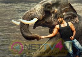 Raja Bheema 1st Look Poster