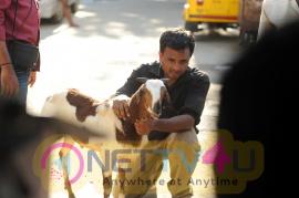 Pattarai Movie Stills  Tamil Gallery