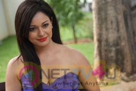 Pooja Kumar New Stills Hindi Gallery