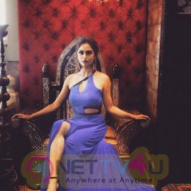 Krystle D Souza New Pics Hindi Gallery
