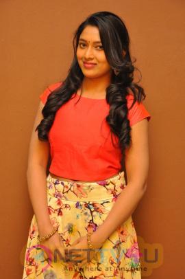 Telugu Actress Sneha Attractive Pics Telugu Gallery