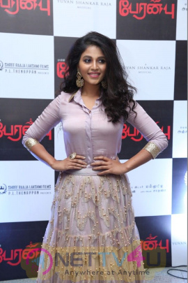 Peranbu Movie Audio Launch Photos  Tamil Gallery