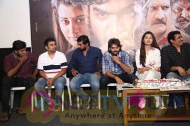 RX100 Movie Success Meet Images  Telugu Gallery