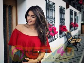 Actress Shama Sikander Latest Hot Photo Shoot Hindi Gallery
