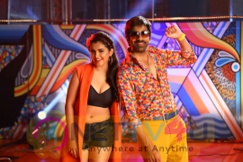 Nela Ticket Movie Photos  Telugu Gallery