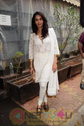 Mallika Sherawat Came To Indigo Hindi Gallery