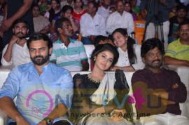 Tej I Love You Audio Success Meet Best Images