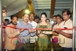 Actress Kashish Vohra At National Silk Expo Launch Images Telugu Gallery