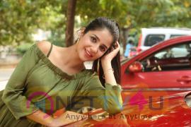 Actress Kashish Vohra Good Looking Pics Telugu Gallery