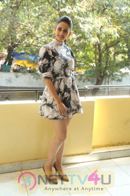 Actress Rakul Preet Singh Interview  Pics Telugu Gallery