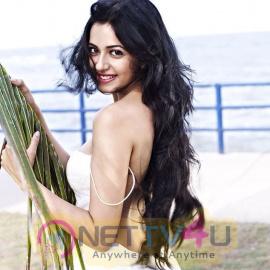 Actress Rakul Preet Singh Gorgeous Photos