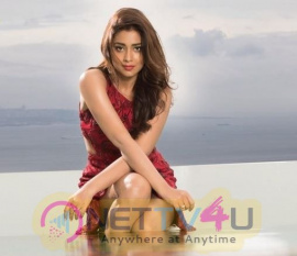 Actress Shriya Saran Celestial Images Tamil Gallery