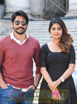 Sithara Entertainments Production No 3: Director Maruthi - Naga Chaitanya & Anu Emmanuel Shooting Started Pics Telugu Gallery