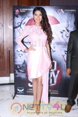 Blood Story Film First Poster Launch With Actress Lopamudra Raut Lovely Images  Hindi Gallery