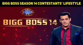 Hindi Bigg Boss Season 14 Contestants And Their Lifestyle