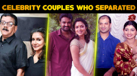 South Indian Celebrity Couples Who Separated In 2016