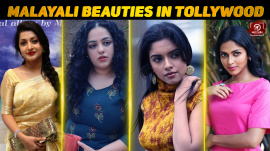 Top 10 Malayali Beauties In Tollywood