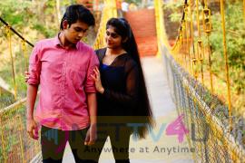 KRISHNAM Telugu Movie Stills Telugu Gallery