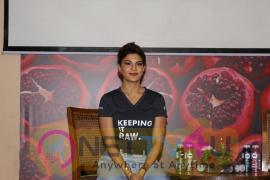 Jacqueline Fernandez At Brand Ambessdor Of Juice Brand Hindi Gallery