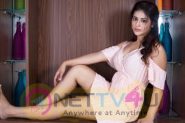 Actress Priyanka Jalwalkar Good Looking Stills  Telugu Gallery