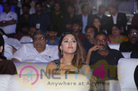 Actress Anu Emmanuel At Agnyaathavaasi Movie Audio Launch Pics
