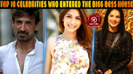 Top 10 Celebrities Who Entered The Bigg Boss House