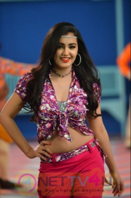 Nela Ticket Telugu Movie Heroine Malavika Sharma Stunning Stills  Telugu Gallery