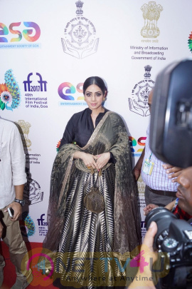 Inauguration Of Indian Panorama By Sridevi At IFFI 2017 Images