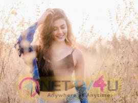 Actress Anisha Ambrose Good Looking Images Telugu Gallery