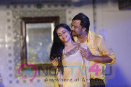 Kombu Movie Stills Tamil Gallery