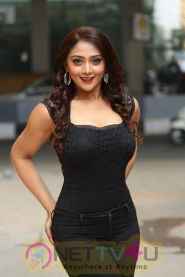 Actress Natasha Doshi Glamorous Pics Telugu Gallery