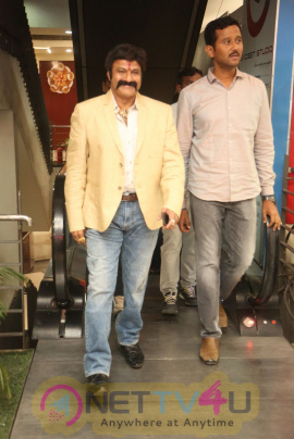 Jai Simha Success Meet Images