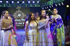 Mannara Chopra In Ethnic Wear As A Showstopper For Ap Fashion Week Telugu Gallery