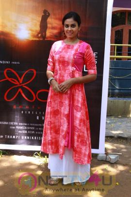 Aila Movie Pooja Stills Tamil Gallery