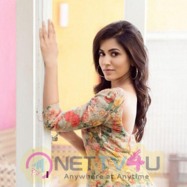 Actress Anju Kurian Attractive Stills Malayalam Gallery