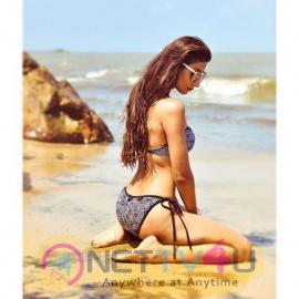 Actress Shivalika Sharma Sexy Images Hindi Gallery