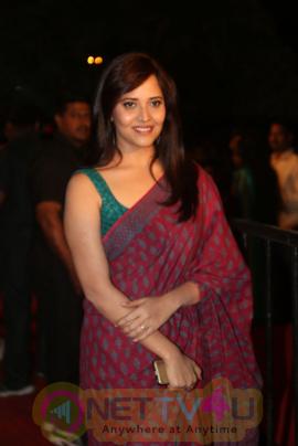 Actress Anasuya Bharadwaj Exclusive Photos Telugu Gallery