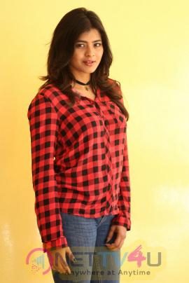 Actress Hebha Patel Grand Pics At Nanna Nenu Naa Boyfriends Success Meet  Telugu Gallery